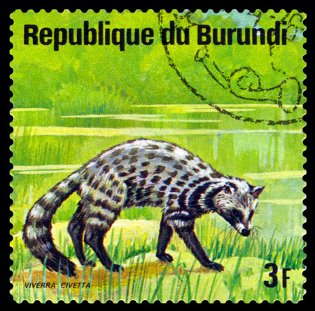 indian postal stamp: BURUNDI - CIRCA 1975: A stamp printed by Burundi shows  Indian civet, Animals Burundi, circa 1975.