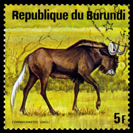 BURUNDI - CIRCA 1975: A stamp printed by Burundi shows  Wildebeest, Animals Burundi, circa 1975.