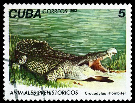 fauna: CUBA CIRCA 1982: Un sello impreso en espect�culos Geocapromus colombianus Fauna Prehist�ricos circa 1982 Editorial