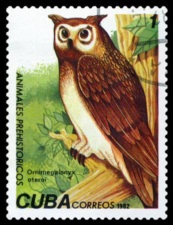 fauna: CUBA CIRCA 1982: Un sello impreso en espect�culos Ornimegalonyx Fauna Prehist�ricos oteroi circa 1982 Editorial