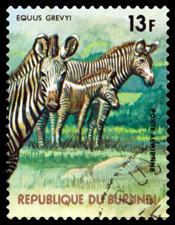 BURUNDI CIRCA 1977: A stamp printed by Burundi shows Grevy39s zebra Animals Burundi circa 1977. Sajtókép