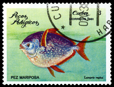 ichthyology: CUBA CIRCA 1981: a stamp printed by Cuba shows Lampris regius Pelagic Fish circa 1981 Editorial