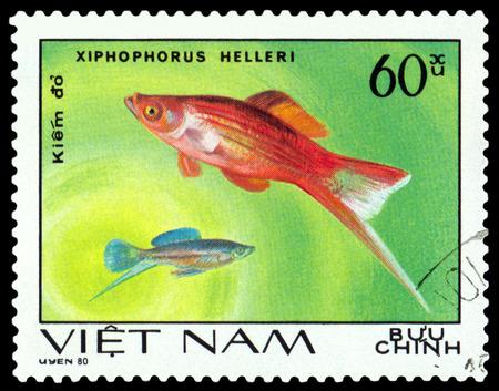philately: VIETNAM CIRCA 1980: A stamp printed in Vietnam shows fishes Xiphophorus Helleri Ornamental Fish circa 1980