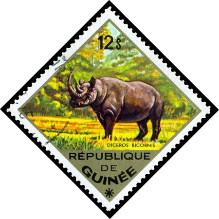 REPUBLIQUE DE GUINEE CIRCA 1976: a stamp printed by Republique de Guinee shows Diceros Bicornis series animals Africa circa 1976