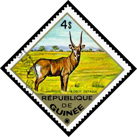 guinee: REPUBLIQUE DE GUINEE CIRCA 1976: a stamp printed by Republique de Guinee shows WaterbuckKobus defassa series animals Africa circa 1976