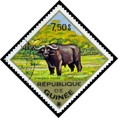 guinee: REPUBLIQUE DE GUINEE CIRCA 1976: a stamp printed by Republique de Guinee shows Syncerus caffer series animals Africa circa 1976