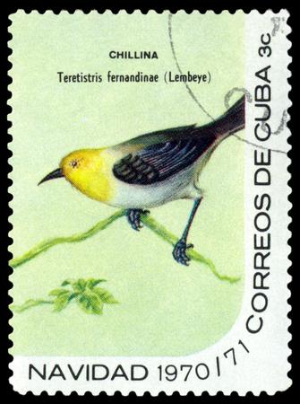 philately: CUBA - CIRCA 1970: A stamp printed by Cuba, shows  bird  Yellow-headed warbler, Teretistris  fernandinae, circa 1970 Editorial