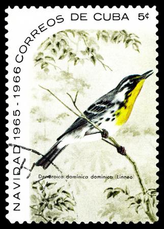 CUBA - CIRCA 1965: A stamp printed by Cuba, shows  bird  Yellow-throated warbler, Dendroica dominica , circa 1965