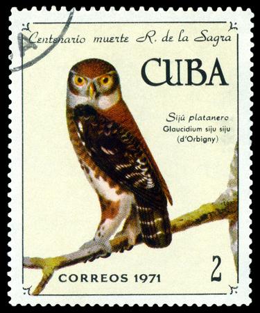 philately: CUBA - CIRCA 1971: A stamp printed by Cuba, shows bird Cuban pygmy owl, Glaucidium siju, , circa 1971