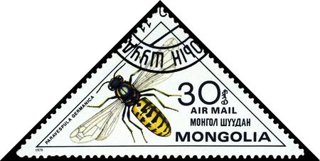 timbre postal: MONGOLIA - alrededor de 1979: Un sello impreso en Mongolia demuestra la avispa Paravespula Germanica, Insectos de la serie, alrededor del año 1979. Editorial