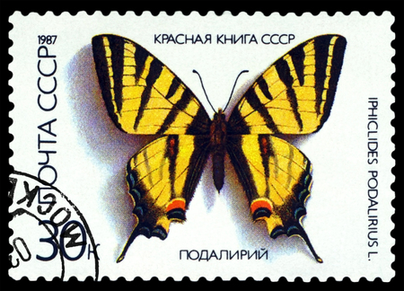 red book: RUSSIA - CIRCA 1987: A stamp printed in Russia shows butterfly Iphiclides podalirius, series The Red Book of the USSR, circa 1987. Editorial