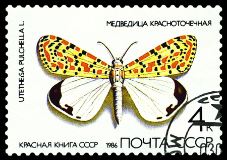 red book: USSR - CIRCA 1986: A stamp printed in Ussr shows a butterfly  Utetheisa pulchella, with the inscription  The Red Book of the USSR, from the series Butterfly, circa 1986.