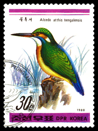 est: STAVROPOL, RUSSIA - APRIL 30, 2016: a stamp printed in DPRK,  shows Vulpes bengalensis est Atthis Alcedo, Birds series, circa 1988