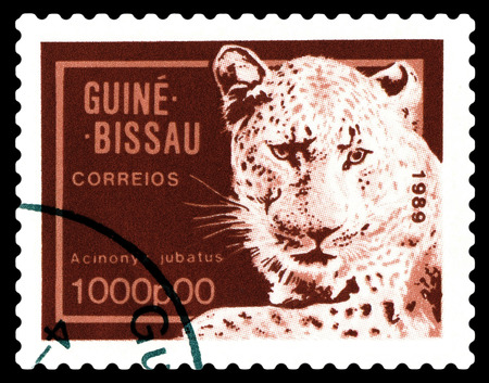 STAVROPOL, RUSSIA - A stamp printed by Guinea - Bissau,  shows African  cheetah,  circa 1989.