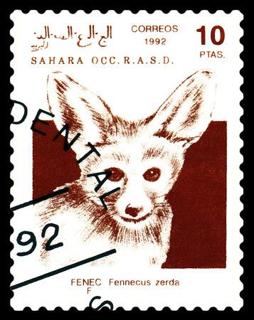 STAVROPOL, RUSSIA - A stamp printed in Sahrawi Arab Democratic Republic (SADR), shows   Fennec Fox (Vulpes zerda), circa 1992 Stock Photo