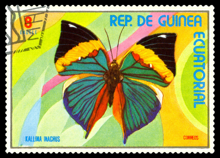 STAVROPOL, RUSSIA - A stamp printed in  Equatorial Guinea shows butterfly Kallima Inachus, circa 1976.