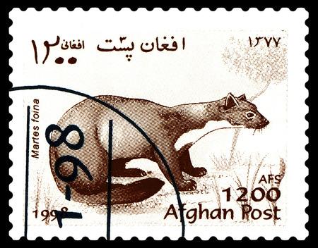 STAVROPOL, RUSSIA - a stamp printed by Afganistan shows  Stone Marten  (Martes Foina),  Fur-bearing  Mammals,  circa 1998
