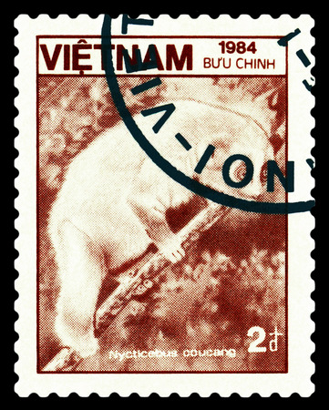 STAVROPOL, RUSSIA - A stamp printed in Vietnam shows  Loris lentos (Nycticebus coucang), circa 1984