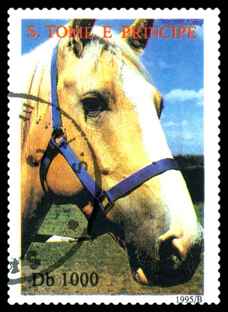 STAVROPOL, RUSSIA - A stamp printed in Sao Tome and Principe shows  Horse, series Greenpeace,  circa 1995