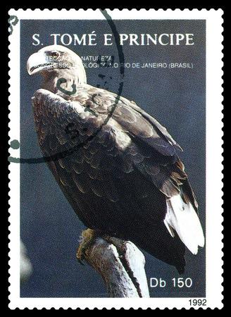 STAVROPOL, RUSSIA - A stamp printed in Sao Tome and Principe shows  Eagle, series Greenpeace,  circa 1992 Stock Photo