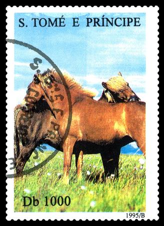 STAVROPOL, RUSSIA - A stamp printed in Sao Tome and Principe shows Horses,  circa 1995