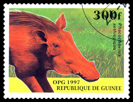 STAVROPOL, RUSSIA - October 12, 2016: a stamp printed in Guinea shows  Desert warthog (Phacochoerus aethiopicus),  circa 1997.