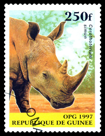 STAVROPOL, RUSSIA - October 12, 2016: a stamp printed in Guinea (Republique de Guinee), shows White Rhinoceros (Ceratotherium simum) ,  circa 1997.