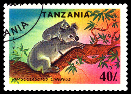 STAVROPOL, RUSSIA - December 11, 2016: a stamp printed by Tanzania shows  Phascolasctos Cinereus (Koala),  circa 1994 Editorial