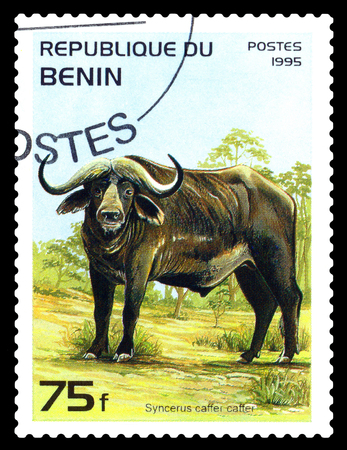 STAVROPOL, RUSSIA - January 09, 2017: A Stamp sheet printed in Benin shows Syncerus caffer caffer (African buffalo), circa 1995 Editorial