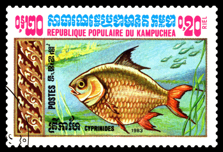 ichthyology: STAVROPOL, RUSSIA - February 10 2017 : A Postage Stamp Printed in the Cambodia  Shows  Goldfish,  circa 1983 Stock Photo
