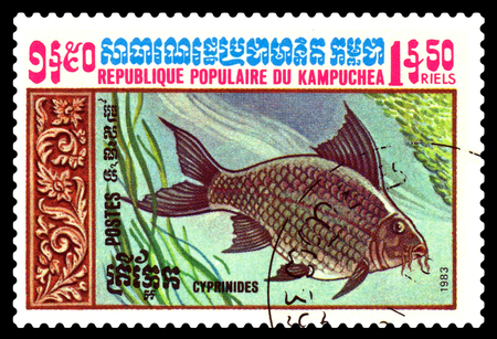 STAVROPOL, RUSSIA - February 10 2017 : A Postage Stamp Printed in the Cambodia  Shows  Crucian,  circa 1983