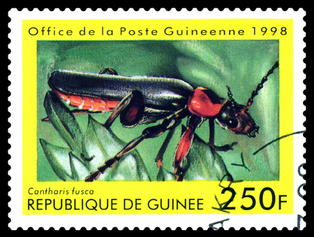 STAVROPOL, RUSSIA - April 30, 2017: a stamp printed in Guinea (Republique de Guinee)  shows  Beetle Cantharis fusca, series beetle, circa 1998 Editorial