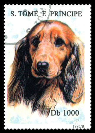 STAVROPOL, RUSSIA - May 07.2017: A stamp printed in Sao Tome and Principe shows  dog  Spaniel,  circa 1995 Editorial