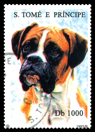 STAVROPOL, RUSSIA - May 07.2017: A stamp printed in Sao Tome and Principe shows Boxer dog, circa 1995