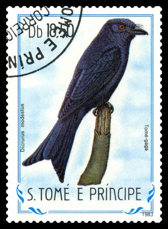 gaga: STAVROPOL, RUSSIA - May 12. 2017: A stamp printed in Sao Tome and Principe shows  bird Tome - gaga (Dicrurus modestus), circa 1983