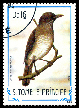 STAVROPOL, RUSSIA - May 12. 2017: A stamp printed in Sao Tome and Principe shows  bird  Toldo (Turdus olivaceofuscus), circa 1983