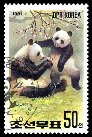 STAVROPOL, RUSSIA - May 14, 2017: A Stamp sheet printed in North Korea shows Giant Pandas with cub, series Pandas, circa 1991