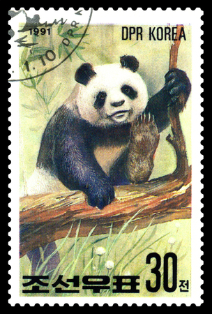 STAVROPOL, RUSSIA - May 14, 2017: A Stamp sheet printed in North Korea shows Panda on the tree, series Pandas, circa 1991 Editorial