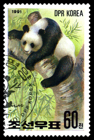 STAVROPOL, RUSSIA - May 14, 2017: A Stamp sheet printed in North Korea shows Panda sleeping, series Pandas, circa 1991