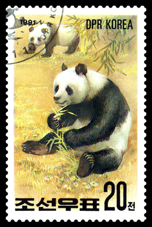 STAVROPOL, RUSSIA - May 14, 2017: A Stamp sheet printed in North Korea shows Pandas are eating, series Pandas, circa 1991