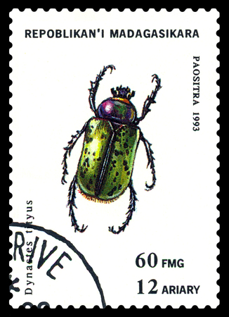 STAVROPOL, RUSSIA - May 23, 2017: a stamp printed in Malagasy Republic shows  Beetle  Dynastes tityus, series beetle, circa 1993