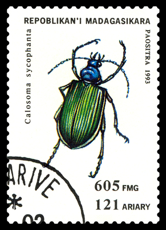 STAVROPOL, RUSSIA - May 23, 2017: a stamp printed in Malagasy Republic shows  Beetle  Calosoma sycopha, series beetle, circa 1993
