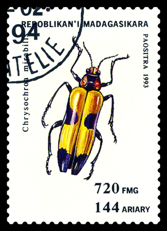 STAVROPOL, RUSSIA - May 23, 2017: a stamp printed in Malagasy Republic shows  Beetle  Chrysochroa mirabilis, series beetle, circa 1993