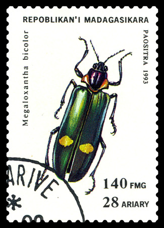 STAVROPOL, RUSSIA - May 23, 2017: a stamp printed in Malagasy Republic shows  Beetle  Megaloxantha bicolor, series beetle, circa 1993
