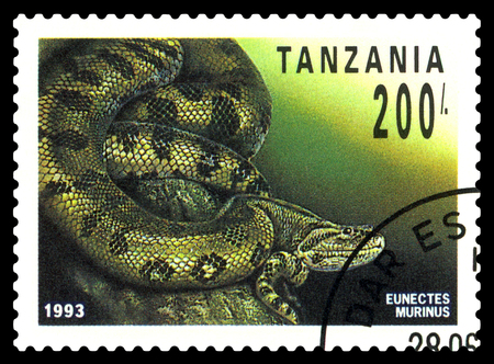 STAVROPOL, RUSSIA - May 06, 2017: a stamp printed by  Tanzania  shows boa Anaconda (Eunectes Murinus), series Reptile,  circa 1993