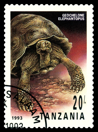 STAVROPOL, RUSSIA - May 06, 2017: a stamp printed by  Tanzania  show  Geochelone Elephantopus, series Turtles,  circa 1993
