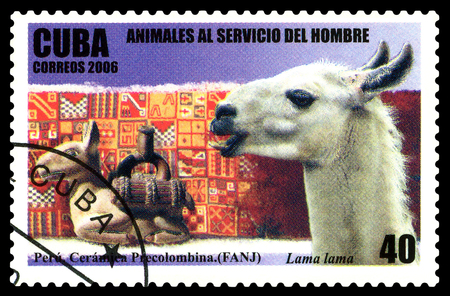 STAVROPOL, RUSSIA - June 07, 2017: a stamp printed by  Cuba  shows Lama, circa 2006
