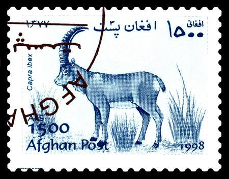 STAVROPOL, RUSSIA - June 12, 2017: A stamp printed in Afghanistan shows Alpine mountain goat (Capra ibex) circa 1998 Editorial