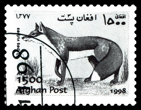 STAVROPOL, RUSSIA - June 12, 2017: A stamp printed in Afghanistan shows  Foxes (Vulpes, Vulpes) circa 1998