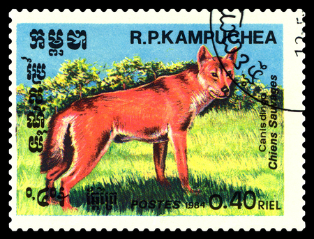 STAVROPOL, RUSSIA - June 24, 2017 : A Postage Stamp Printed in the Cambodia  Shows  Canis  dingo (Canis lupus dingo), circa 1984